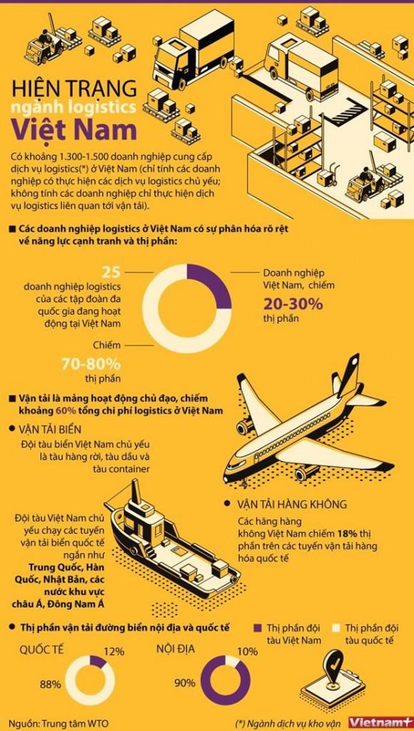 logisticvn-infographic